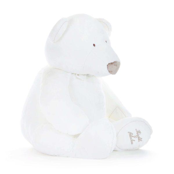 Bear Polaire